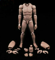 Figur Körper MX02-A 12inch Europe Skin Male Action Figure Body Fit For 1/6 Head