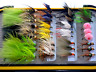 Fly Fishing Flies Lures Lot Dry Wet Nymph Assortment Trout Streamer Hook Box New