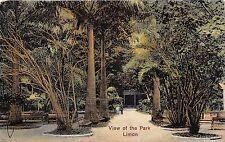 LIMON COSTA RICO VIEW OF VARGAS PARK POSTCARD 1910s