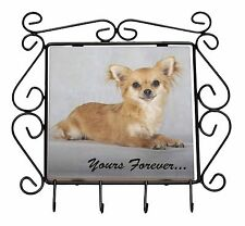 "Brown Chihuahua ""Yours Forever..."" Wrought Iron Key Holder Hooks Chri, AD-CH6yKH"