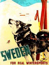 ART PRINT POSTER TRAVEL TOURISM WINTER SPORT SKI HUSKY DOG SNOW SWEDEN NOFL1277