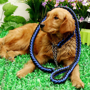 Durable Rope Dog Lead and Dog Collar | Blue & Black | Large Dogs (20-35kgs)