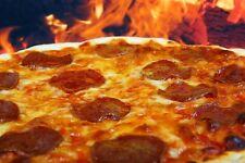 Pizza Recipes Oven Construction Plans Walkthrough Books Materials Outdoor DVD