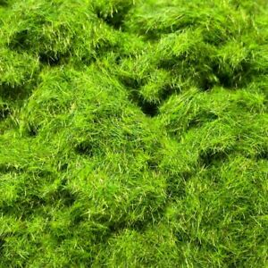 2mm Bright Green Grass Static Grass - 30g