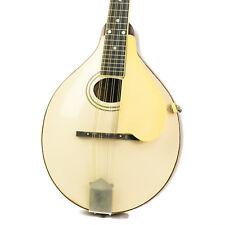 1919 Gibson A3 Mandolin!