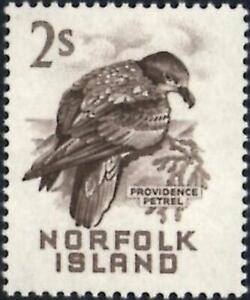 Norfolk Islands 1961 Solanders Petrel  2/- Sepia  SG.32 Mint (Hinged)