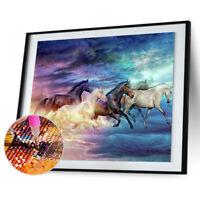 5D Diamond Horse Painting Embroidery DIY Craft Cross Stitch Kit Home Decor AU