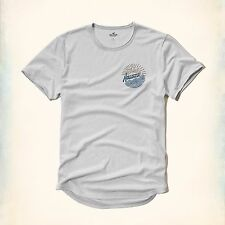 HOLLISTER Logo Graphic Easy-Fit Tee Med / Large Avlbl *Brand New w/ Tag* T-Shirt