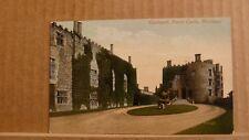 Postcard unposted Montgomeryshire, Welshpool, Powis castle, Courtyard