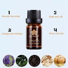 Hair Fast Growth Herb Oil Hair Loss Treatment Herbal Essence Haarwuchsmittel New