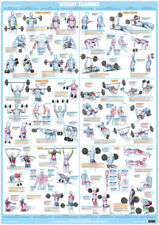 Bodybuilding Weight Training Poster Barbell Dumbbell Chart