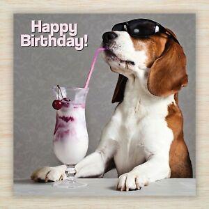 "Funny Beagle Birthday Card - ""Cool Dude"", ""Party Beagle"" Dog Pup Freepost!"