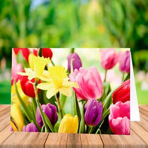 Grußkarten ohne Text Blanko Karten Glückwunsch Glückwunschkarte Neutral Frühling