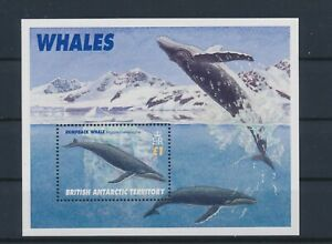 LO16768 British Antarctic Territory whales fish sealife good sheet MNH