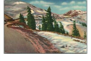 Vintage 1934 Linen Postcard: Timberline in the Rockies PM Colorado Springs CO