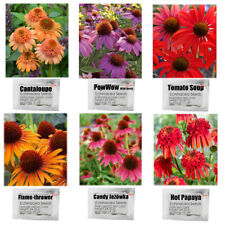 6 Packs Echinacea Purpurea Coneflower Seeds 6 Color Varieties Individual Package