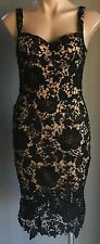 PAPER SCISSORS Black Lace & Blush Sleeveless Sheath Dress Size 8 - Stunning!