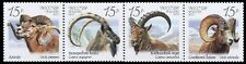 2013. Russia. Fauna of Russia. Wild goats and rams. Strip. MNH