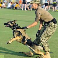 Tactical K9 Training Dog Harness Military Police-Adjustable Molle Nylon Vest US.