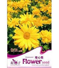 FD1796 Sneezeweed Helenium Bigelovii chrysanthemum Flower Seed ~1 Pack 50 Seeds~