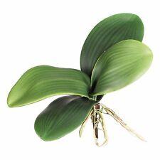 Künstl. ORCHIDEENLAUB 15 cm. Mit 5 Orchideenblätter und Luftwurzeln. 172872-50