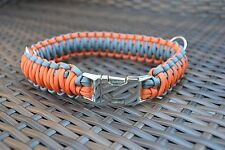 Bull Terrier Dog Collar with large metal buckle