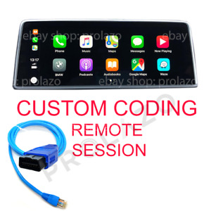 BMW MINI remote custom coding session for F and G series via ENET ESYS ISTA