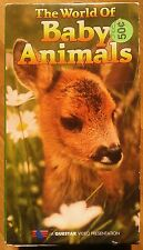 The World Of Baby Animals (2-VHS's, 1995) Questar Video #QV-2404 [100 min] Good.