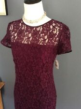 Beautiful Diane Von Furstenberg Lace  Dress New! $325 Sz 0-2 Purple Rose