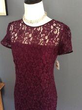 Beautiful Diane Von Furstenberg Lace  Dress New! $325 Sz 0-2 Purple Rose