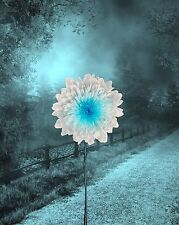 Teal Aqua Wall Art Print Home Decor Surreal Picture Landscape Flower Photo & Mat