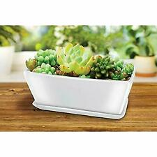 Ceramic Planters Rectangular Includes With Draining Holes and Saucer Tray - 10 X