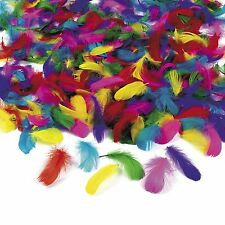600 pc. Wholesale Lot Bulk Feathers Assorted Colors Art Crafts Kids Party Game