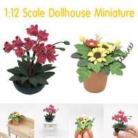 1:12 Scale Dollhouse Miniature Plant Flower Pot Accessory Fairy Garden Decor