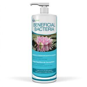 Aquascape 98888 Beneficial Bacteria-Pond Maintenance- Green Water Algae Control