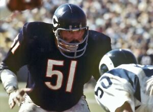 INTENSE HALL OF FAME BEARS LEGEND DICK BUTKUS  IN THIS CLASSIC COLOR 8X10 1