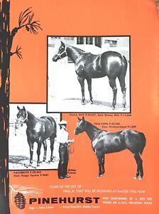 1959 QUARTER HORSE JOURNAL Magazine, book - STAR DUSTER - VINO TINTA -  + MORE!