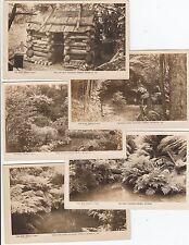 Real photo Rose group 5 postcards Nathania Springs Monbulk Victoria, hut, pond