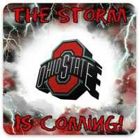 "O.S.U Ohio State University  ""The Storm is Coming Lightning Logo""  Type Magnet"