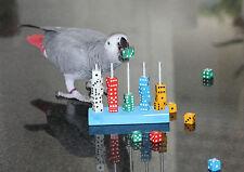 Würfel aus Acryl für Papageien Freisitz TRAINING Papageienspielzeug