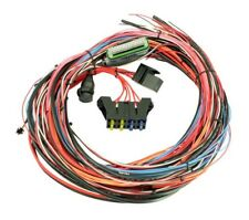 """AEM 96"""" Flying Lead Wiring Harness for EMS-4 with Fuse & Relay Panel 30-2905-96"""