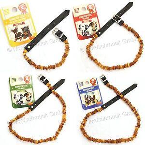 Bernsteinkette Hund Katze Bernstein roh Hundekette Halsband raw amber 20 - 60 cm