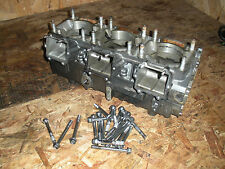 1997 Tigershark Monte Carlo 1000 Engine Cases With Bolts
