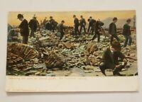 Vintage RPPC Postcard - Searching Ruins Santa Rosa California Earthquake 1906