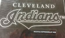 MLB Cleveland Indians Professional Window Graphics, New