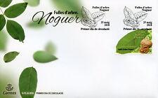 Andorra Spagnola 2018 FDC albero Le foglie di noce 1v Set Coprire ALBERI NATURA FRANCOBOLLI