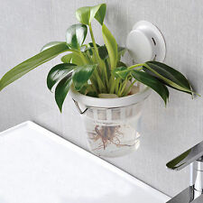 Novelty Creative Suction Cup Water Flower Pot Office Plants Pot Indoor Wall Hang