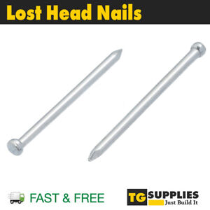 Lost Head Nails Corrosion Resistant Nails Timber Nails Joinery Nails Galvanised