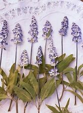 10 Sage Salvia Purple Flower And Stems Pressed Flowers Dried Flower Real Flowers