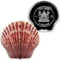 Castaway Seashells: 2019 10g Pure Silver SCALLOP Coin